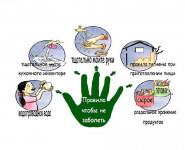 Меры профилактики острых кишечных инфекций